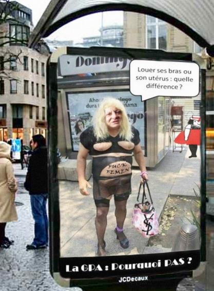 abribus---publicite-la-gpa-grossesse-pour-autrui---pourquoi-pas---pierre-bergé-vilaine-lulu-femme-utérus